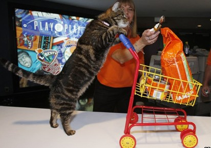 "What's the ""best"" month to buy Pet Products?"