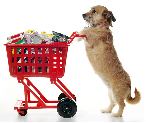 "U.S. Top 100 Retailers – Who is up? Who is down? Who sells ""Pet""?"