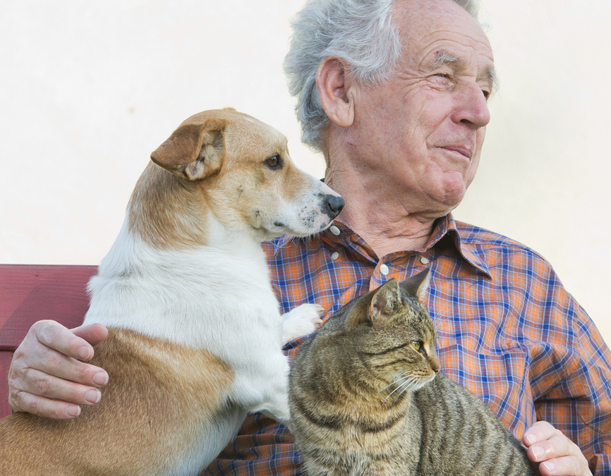 "U.S. PET SPENDING: Does the buyer's ""age"" matter?"