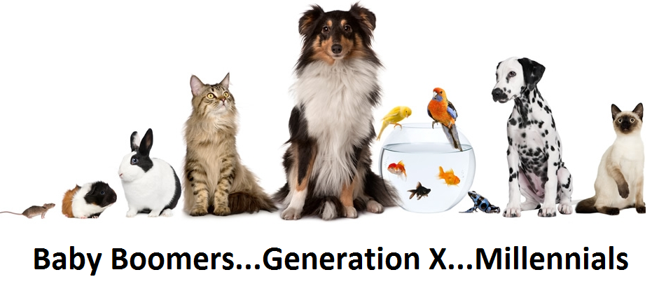 "U.S. PET SPENDING: COMPARING GENERATIONS – ""BOOMERS"" WIN!"