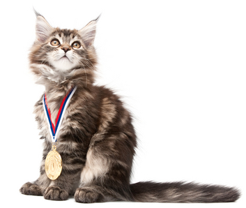 U.S. PET SPENDING DEMOGRAPHICS: The 2014 Winners and Losers are….