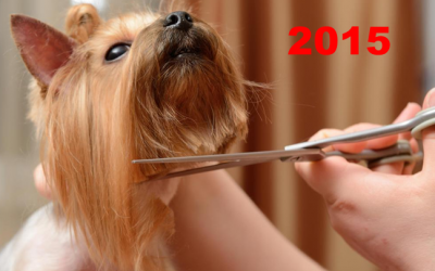 2015 U.S. PET SERVICES SPENDING $6.3B…UP ↑$0.6B