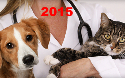 2015 U.S. VETERINARY SPENDING $17.1B…DOWN ↓$0.5B