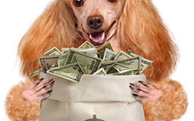 2015 Pet Spending was $67.75B – Where did the $ come from…?