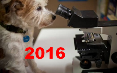 U.S. Pet Industry $ales in 2016: $66.75B – Taking a closer look!