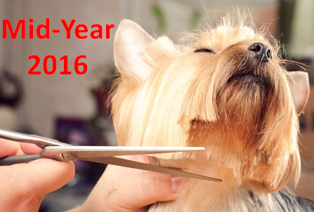 U.S. Pet Services Spending (Non-Vet) $6.82B (↑$0.96B): 2016 Mid-Year Update