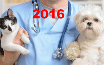 2016 U.S. VETERINARY SERVICES SPENDING $18.12B…UP ↑$1.01B