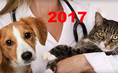 2017 U.S. VETERINARY SERVICES SPENDING $20.67B…UP ↑$2.56B