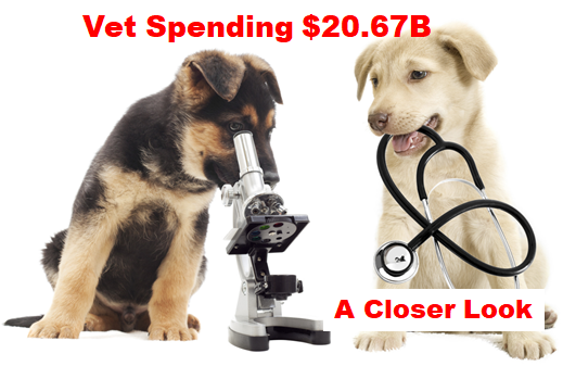 2017 Veterinary Spending was $20.67B- Where did it come from…?